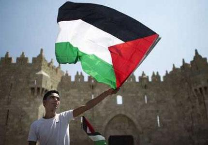 joven_bandera_palestina_afp